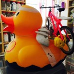 active duck2
