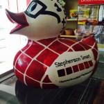 stephenson duck1